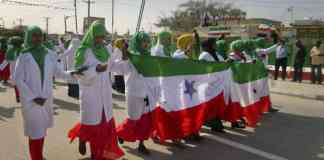 Somaliland Politics Against Investment