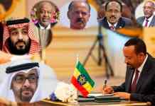Ethiopia Transition Implications For The Horn Of Africa And Red Sea Region