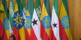 Somaliland Recognition Quest Boosted By Ethiopia And Egypt Scramble For Hargeisa