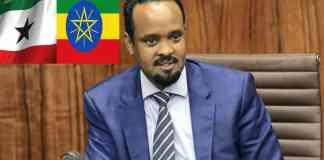 After Egypt, Ethiopian Finance Minister Ahmed Shide Arrives Somaliland