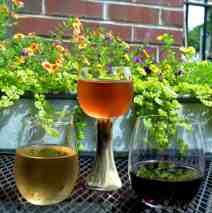 Haw River Wine Man- Wine Tasting