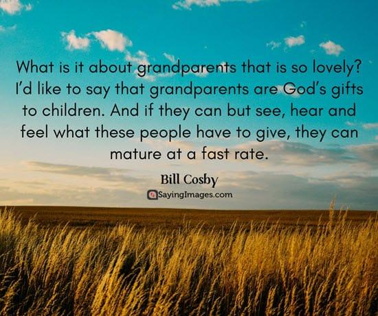 50 great happy grandparents