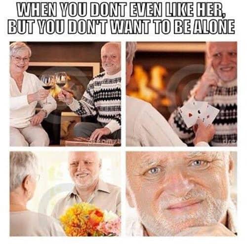 hide the pain harold alone meme