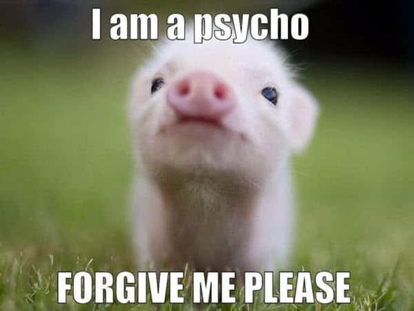 im sorry psycho meme