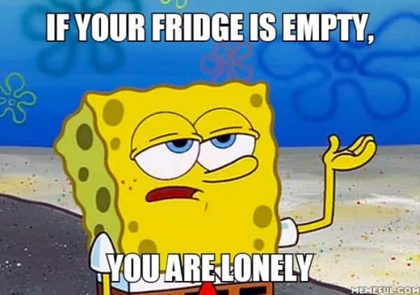 lonely fridge is empty meme