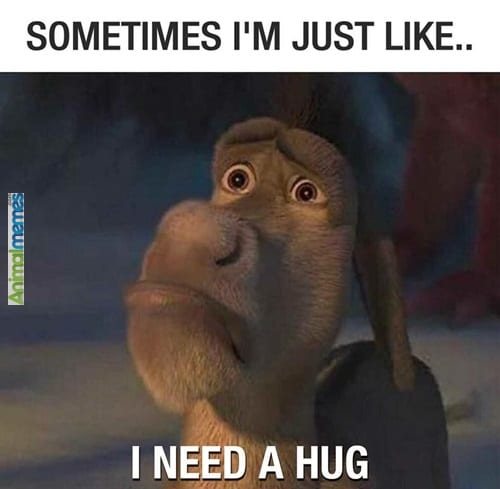lonely hug meme