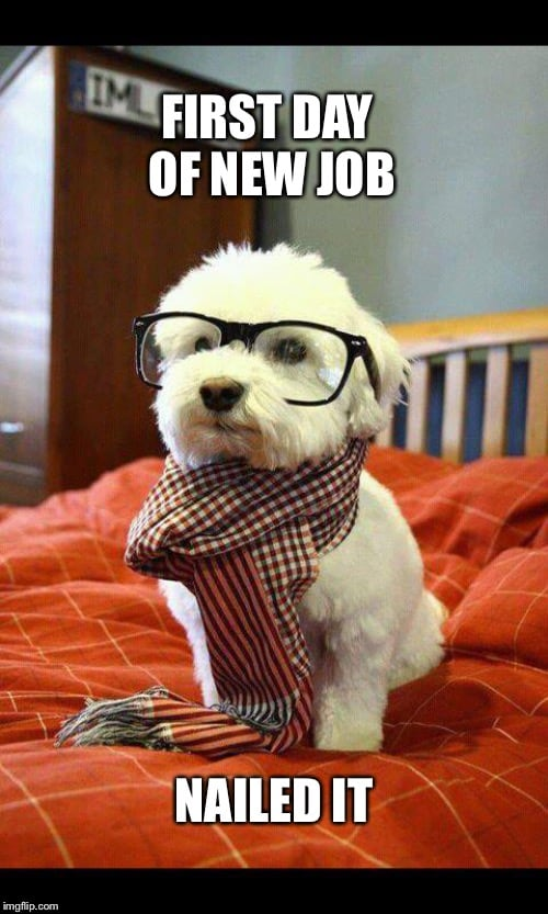 First Day New Job Meme : first, Awesome, Memes, That'll, Proud, SayingImages.com