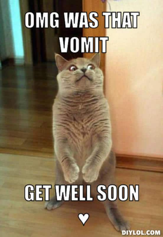 Get Well Soon Meme Images : images, Funny, Memes, Cheer, SayingImages.com