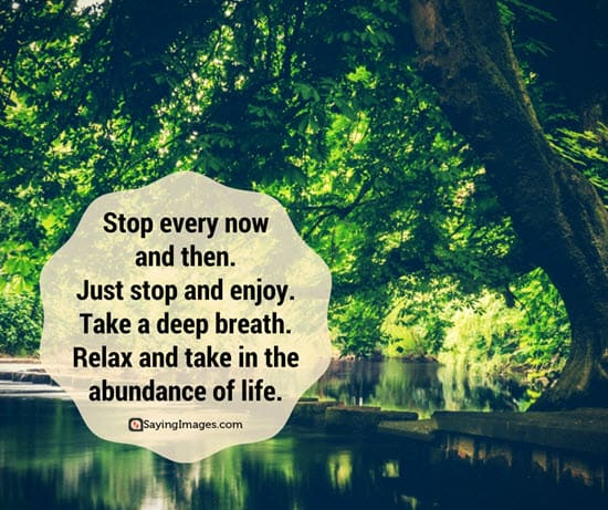 30 Nature Quotes The Hues Of The Earth Is All It Takes Sayingimages Com