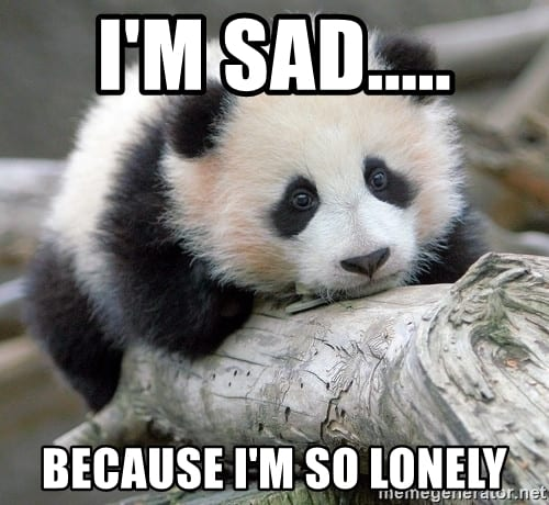30 Lonely Memes That Will Make You Really feel Much less Alone