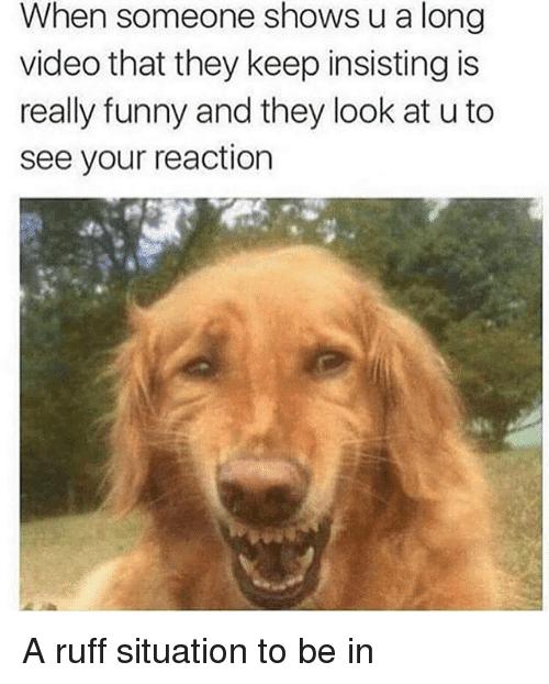 30 really funny memes