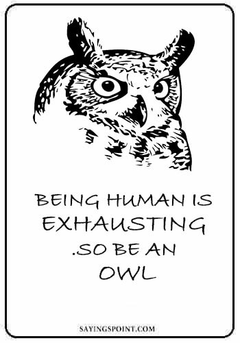 40 Beautiful Owl Quotes and Sayings Sayings Point