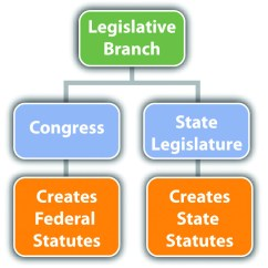 Judicial Branch Court System Diagram 1966 Buick Wildcat Wiring The Branches Of Government Examples Legislative Checks And Balances