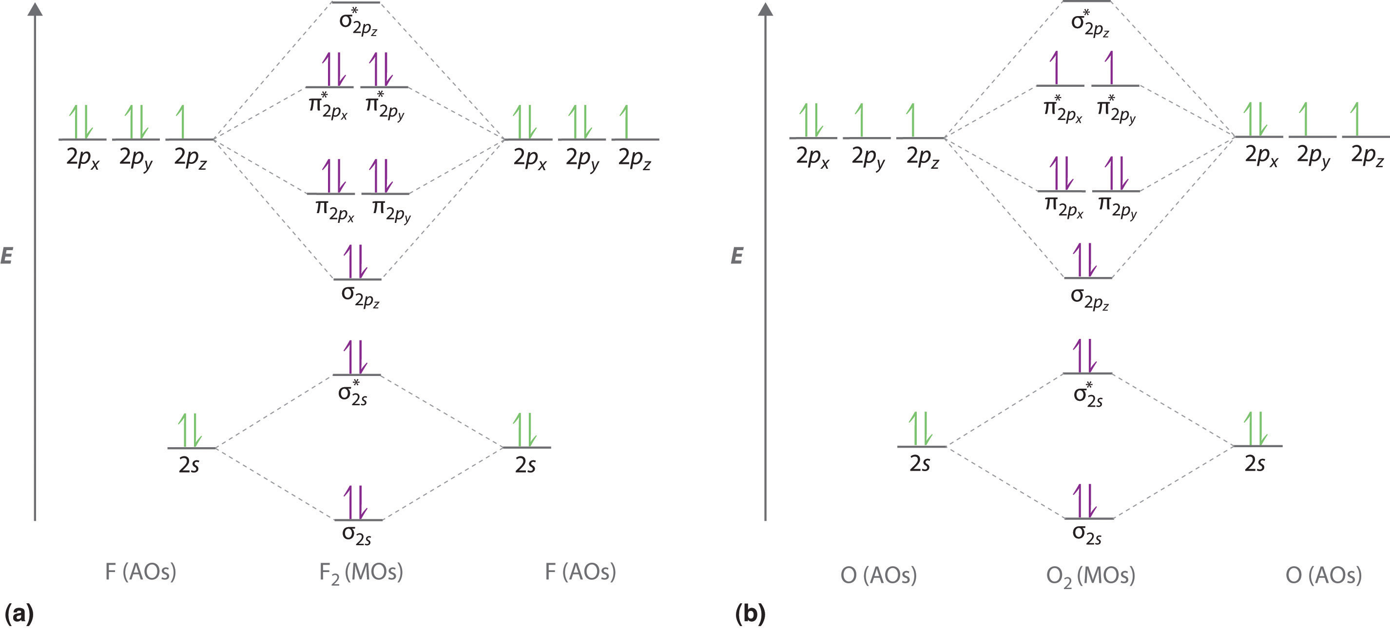 double bond electron dot diagram dimarzio hs3 wiring molecular geometry and covalent bonding models