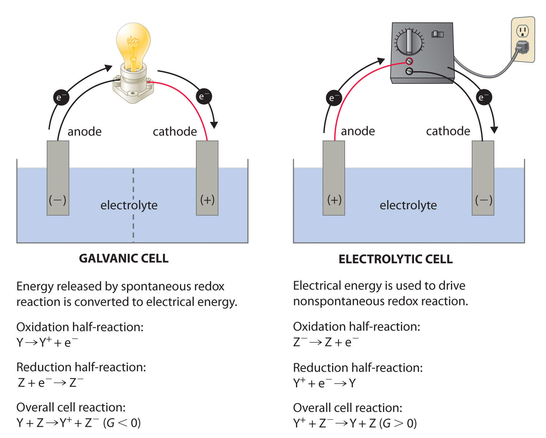 hight resolution of a galvanic cell left transforms the energy released by a spontaneous redox reaction into electrical energy that can be used to perform work
