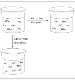 dilute solution diagram u2013 wallpaperdual liquid simultaneous diluter dilute solution diagram acids and bases [ 1512 x 1367 Pixel ]