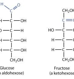 16 2 classes of monosaccharides [ 1499 x 754 Pixel ]
