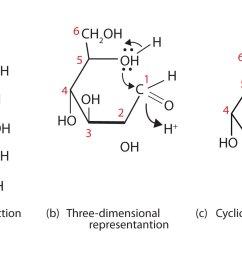 glucose bond diagram [ 1500 x 900 Pixel ]