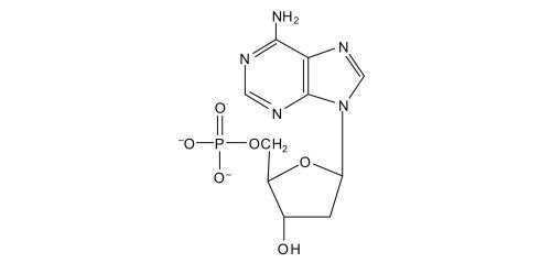 small resolution of for each structure circle the nitrogenous base and identify it as a purine or pyrimidine