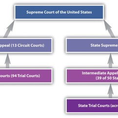 Judicial Branch Court System Diagram Plant Cell Animal Venn The
