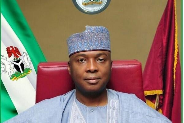 Nigerian Senate Probes Niger Delta Amnesty Programme