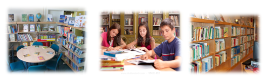 Absence of appropriate textbooks