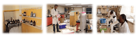 Lack of proper laboratory facilities