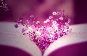 Violet heart ... (Credit: aoao2/Deviantart)