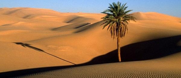 Dashte Lut Iran Desert