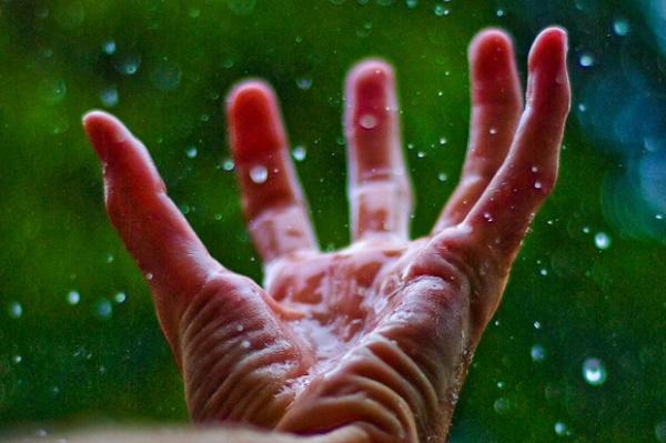 Fingertips can perform calculations (Credit: K.Muncie/Flickr)