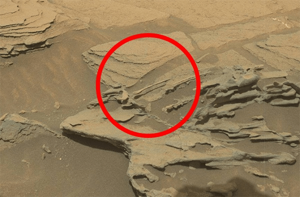 Martian Surface as seen by Mars rover Curiositys Mastcam on sol 1089 (Source: NASA/JPL-Caltech)(