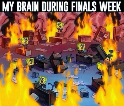 My brain during finals