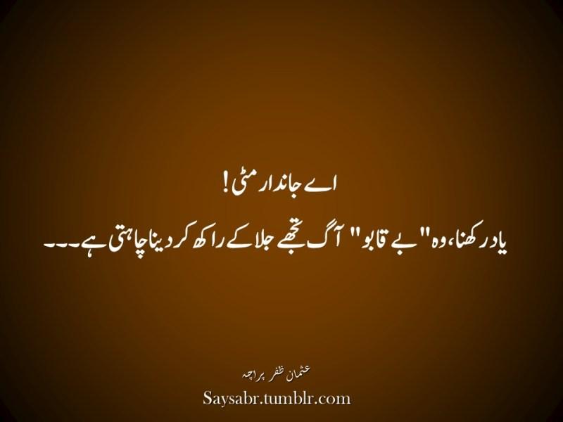 """Aey jaandaar mitti! Yaad rakhna, woh """"be-qabu"""" aag tujhay jala kay raakh kar dena chahti hai…NB. Get eBook of Usman Zafar Paracha's quotations in Urdu – """"میرے خیالات"""" - http://amzn.to/29gFPKD Join Usman on Facebook - https://www.facebook.com/usmanzparacha"""
