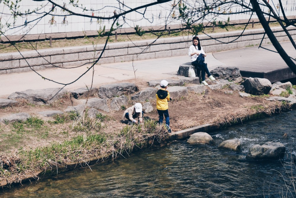 Cheonggyecheon Stream (청계천), Seoul.