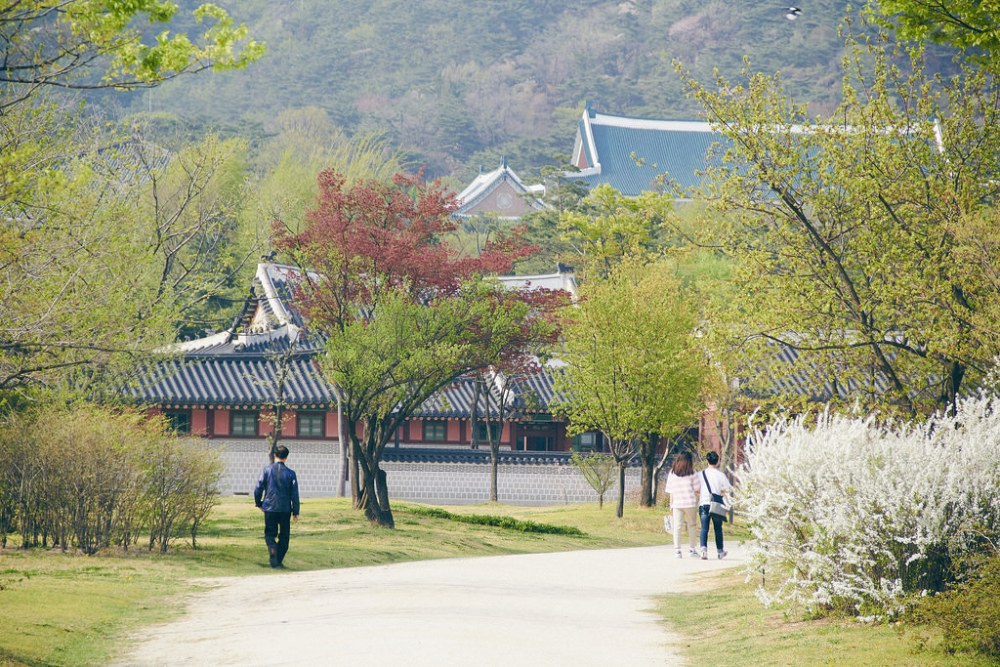 Travel Photographer | Spring at Gyeongbokgung Seoul South Korea