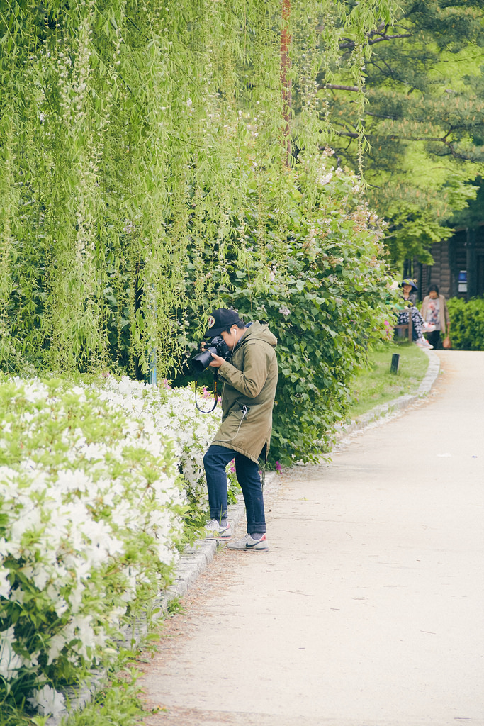 Travel Photographer | Spring at Seonyudo Park Seoul South Korea