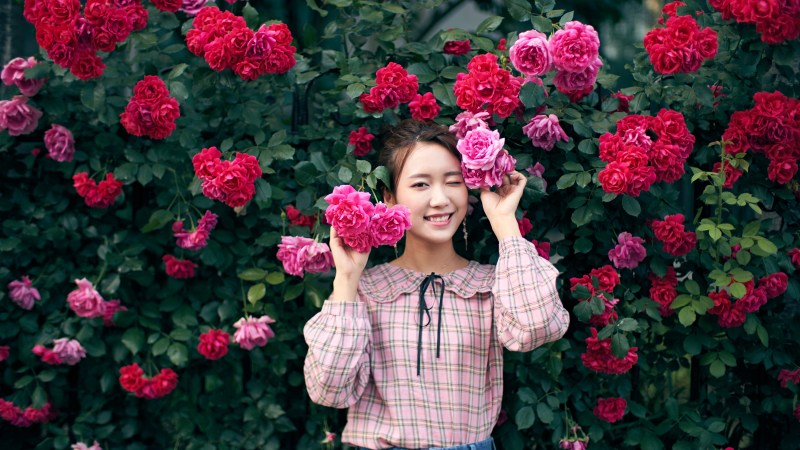 Summer in Seoul: The Season of Roses