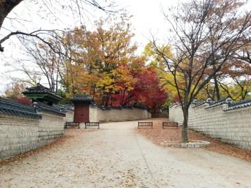 창덕궁 (Changdeokgung)
