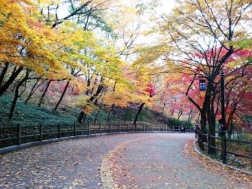 남산 (Namsan), Seoul.