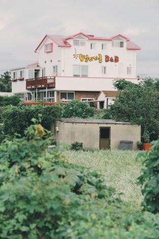 Travel Photographer | B&B Guesthouse in Jeju (뱅디가름 게스트하우스) South Korea