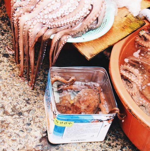 Runaway octopus at Busan Jagalchi Market (부산 자갈치시장)