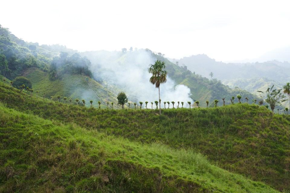 Farmland meets jungle in the Sierra Nevada de Santa Marta