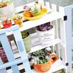 植物の為のDIY – vol.9 –(最終章)|100均すのこ棚に4色ペンキを塗った両開き扉をつけたら、ついに完成! 植物用というよりは、自分用か?