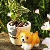 ダイソーのミニ観葉を100均グッズで楽しもう vol.15|斑入りベンジャミンは、ワンコの鉢ポットに植えて… かわいさでは、秋田犬MASARUにも負けてないぞ!【oyageeの植物観察日記】