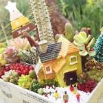 男の箱庭シリーズvol.10 こんな世の中だから、今年のクリスマスは静かに「おうちクリスマス!」【oyageeの植物観察日記】