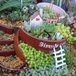 Tanick Landに癒される… 多肉を植え込んだ花壇を、今回から1エリアごとご紹介! 本日は…?【oyageeの植物観察日記】