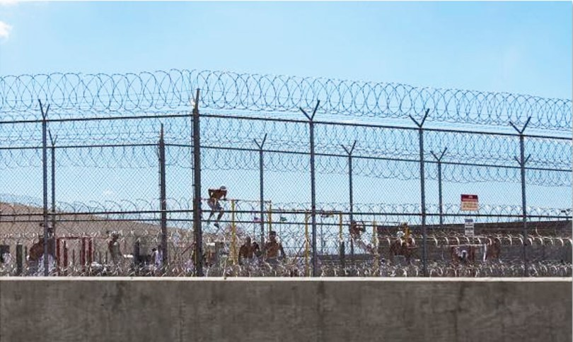 Private Prison Detainees