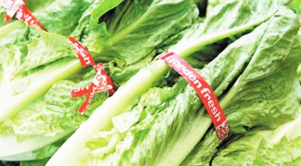 Romaine lettuce warning