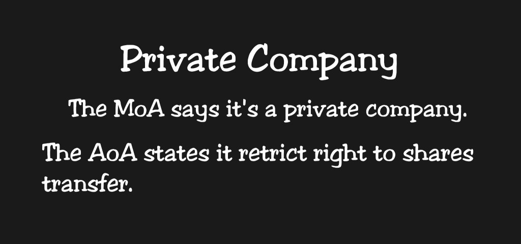 Private company: meaning and key explanations