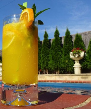 Zingy Citrus Mocktail - Image 2